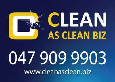 Cleanasclean Car Sign