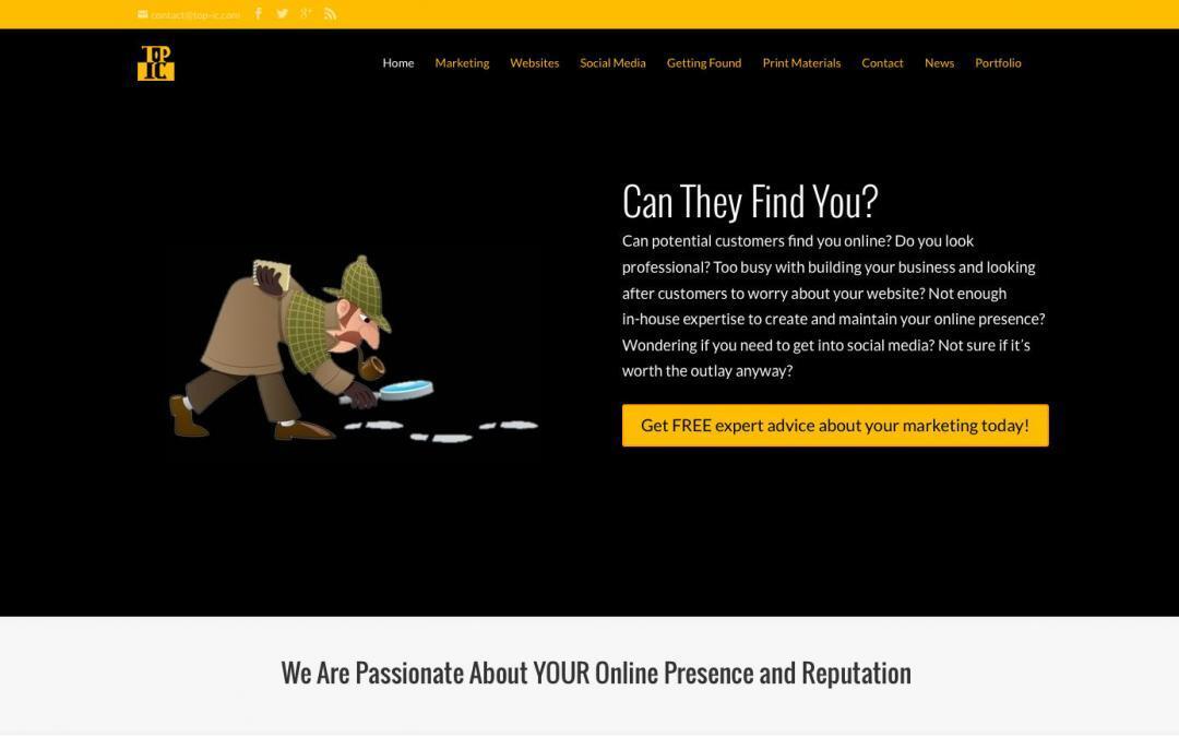 Top IC Website